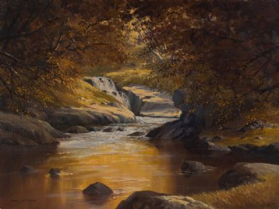 MORNING SUNLIGHT ON THE FALLS by Dennis J McDowell  at Dolan's Art Auction House