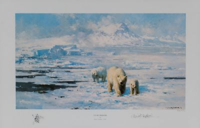 POLAR BEARS, IN THE ICE WILDERNESS by David Shepherd OBE at Dolan's Art Auction House