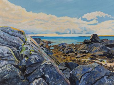 NEAR ARDMORE POINT, SOUTH CONNEMARA by Dorothee Roberts  at Dolan's Art Auction House